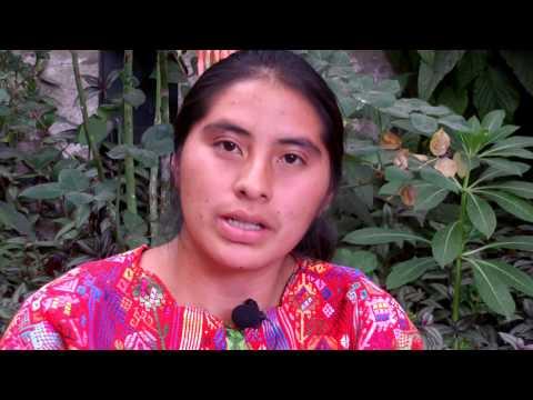 Study Mam in Guatemala