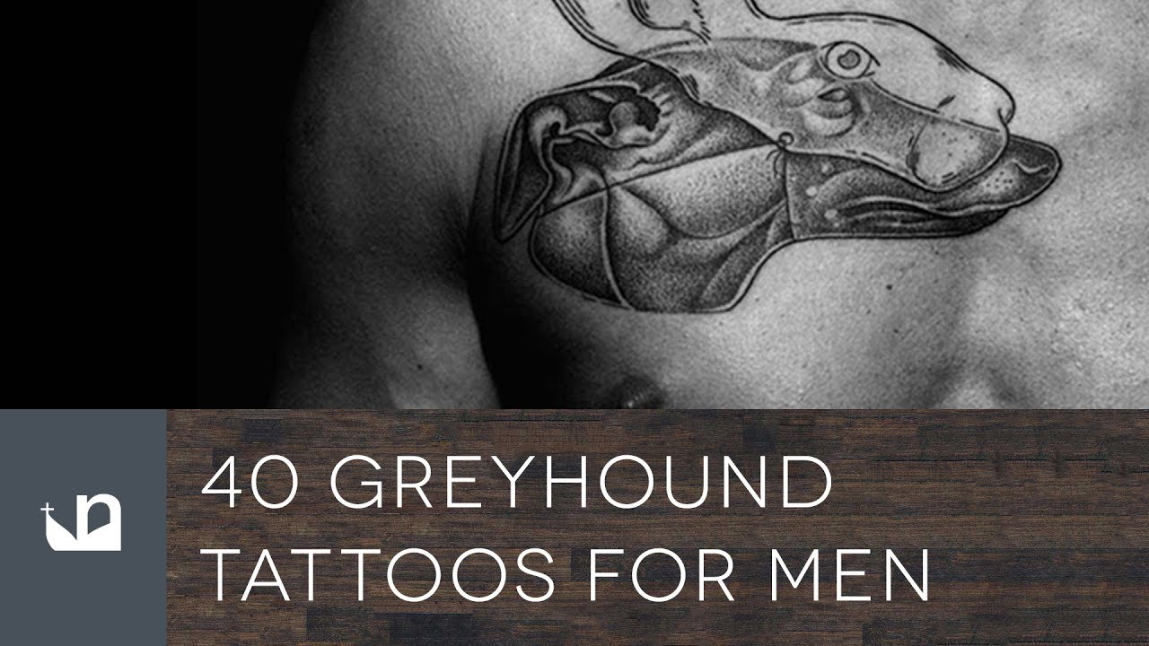40 Greyhound Tattoo Designs For Men – Dog Ink Ideas