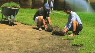 Laying new turf / Lawn Installation
