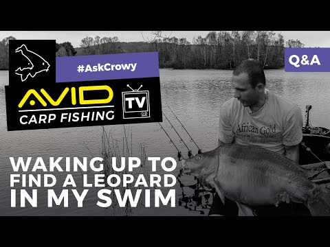 """Avid Carp Fishing TV! 