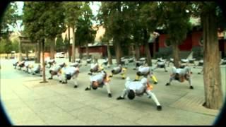 Shaolin Ba Duan Jin 少林八段锦