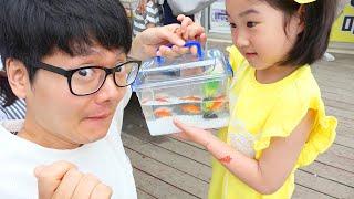 Download Lagu Boram memilih ikan baru mp3