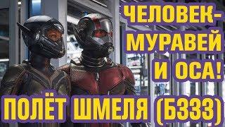 ЧЕЛОВЕК-МУРАВЕЙ и ОСА | ОБЗОР фильма Marvel 2018