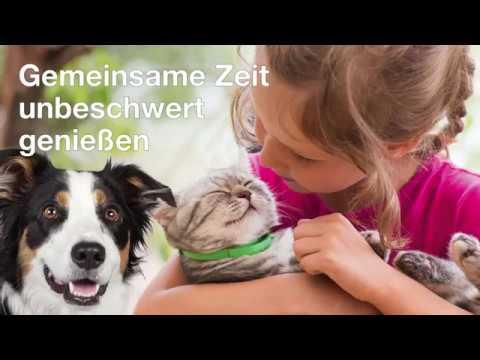 BIODOR Pet ANIMAL - Übersicht und Anwendung