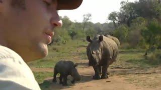 Lucky Escape From A Black Rhino | Ultimate Killers | Bbc