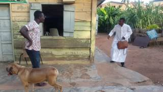 Video Who brought this to the front of the church? download MP3, 3GP, MP4, WEBM, AVI, FLV September 2018