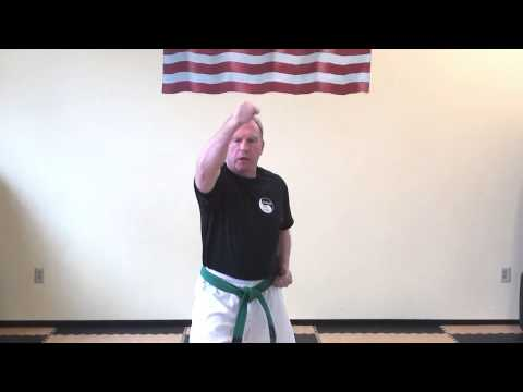 2 Pinan - form of Shaolin Kempo Karate