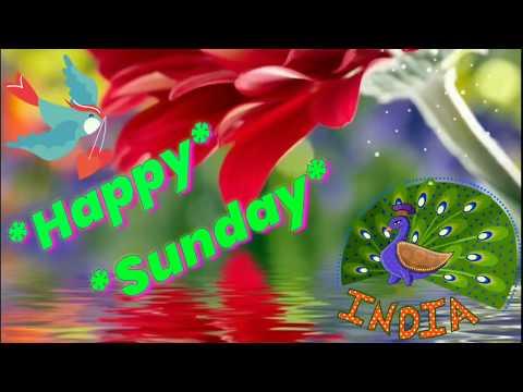 Good morning happy sunday photos hd