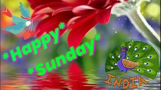 Good Morning Video - whatsapp status, Happy Sunday