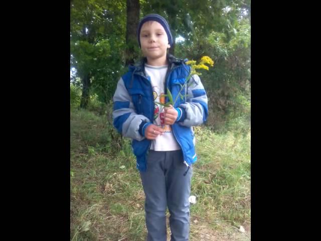Виктор Филипов читает произведение «Шумели листья, облетая…» (Бунин Иван Алексеевич)