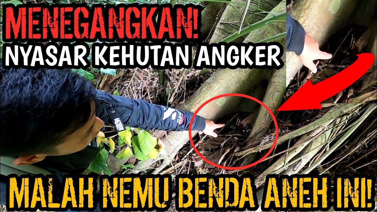 Download MENEGANGKAN! MASUK HUTAN ANGKER MALAH INI YANG DIDAPAT! NYASAR KEHUTAN ANGKER!