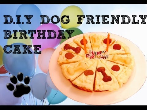 Birthday Cake With Chicken Mince Diy Dog Food A Tutorial By