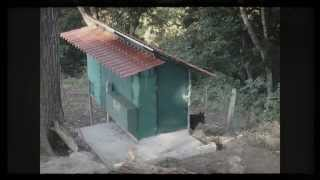 Chicken Coop Design - Easy Cleaning, Easy Egg Collection