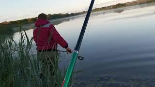 Рыбалка на пруду на карпа 6 сентября 2020 г