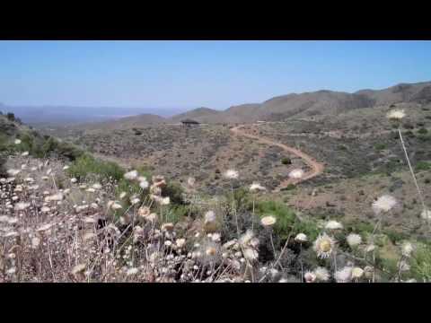 Arizona Gold Claim Testing Rich Hill Part One