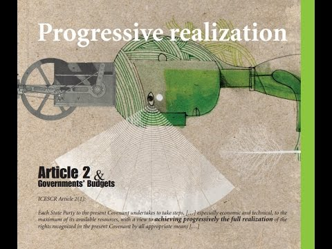 Article 2 & Governments' Budgets Webinar Series: Progressive Realization