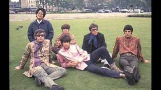 The Turtles -  You Showed Me