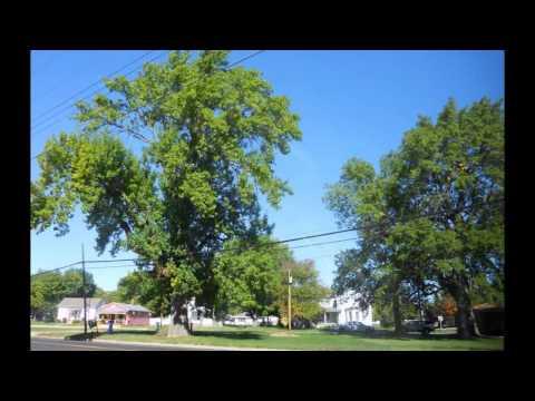 Jerseyville IL  (Sin City)