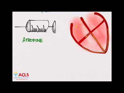 PALS Medications Part One by ACLS Certification Institute
