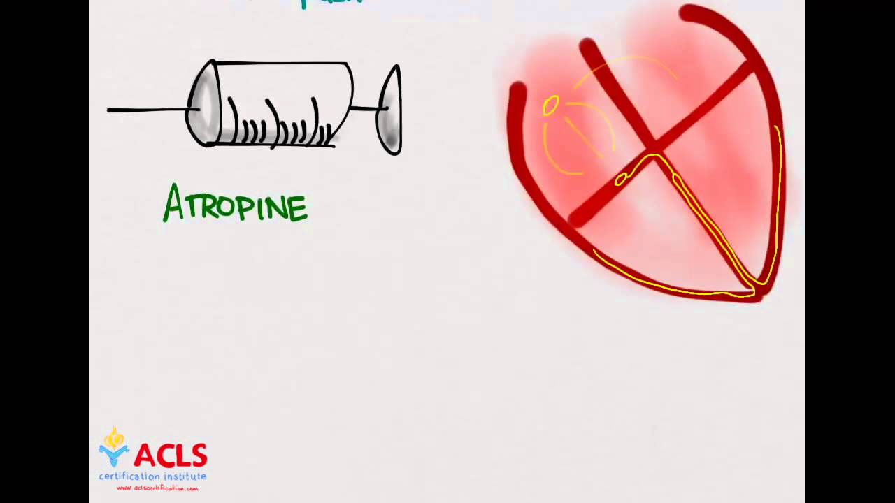 Pals medications part one by acls certification institute youtube xflitez Choice Image