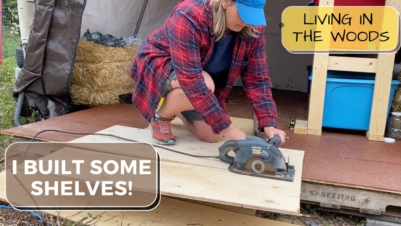 I am not a master carpenter (but I built shelves!)