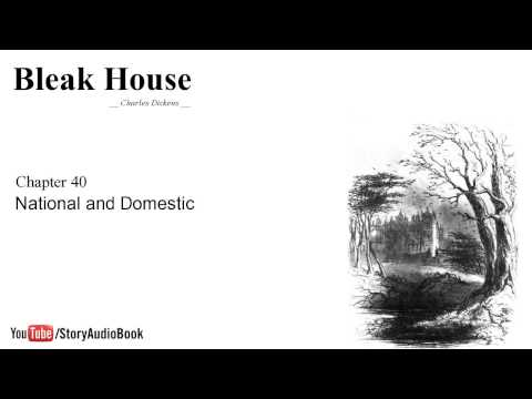 Bleak House by Charles Dickens - Chapter 40: National and Domestic