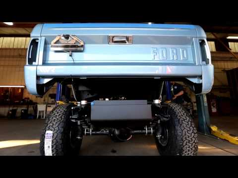 Brittany Blue Bronco Body Frame-Mounted