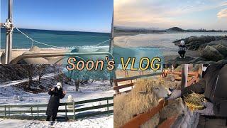 [여행 vlog] 강원도 힐링 여행 +대관령 양떼목장