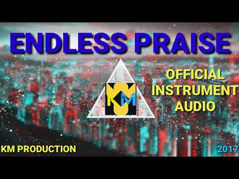 ENDLESS PRAISE PLANETSHAKERS || OFFICIAL AUDIO INSTRUMENT
