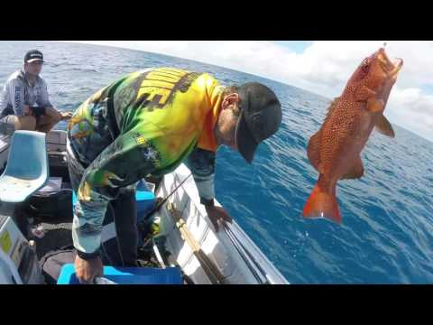 CAIRNS FISHING, GREAT BARRIER REFF FISHING