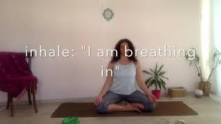 Movement | Mindset | Meditation Part 2 (yoga, fitness, wellness, stretching, strength)