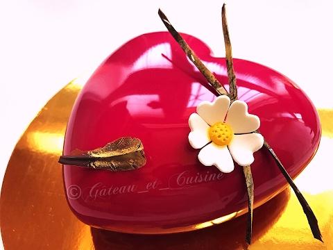 entremets-vanille-,chocolat-et-framboises-et-son-glaÇage-miroir-ultra-brillant