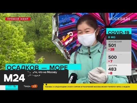 В Москве из-за ливня вышла из берегов река Яуза - Москва 24
