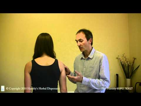 Acupuncture Shoulder Pain