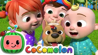 Where Has My Little Dog Gone? | CoCoMelon Nursery Rhymes & Kids Songs