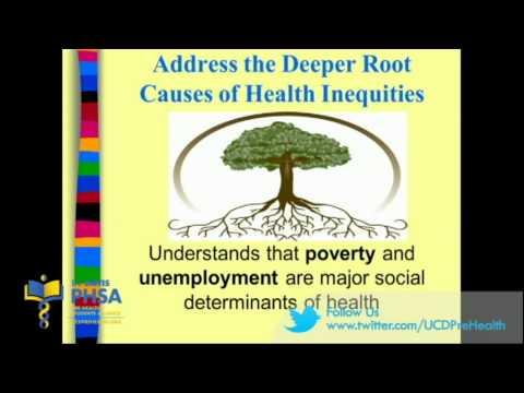 What is Public Health?: Abby M. Rincón, M.P.H. (2013)