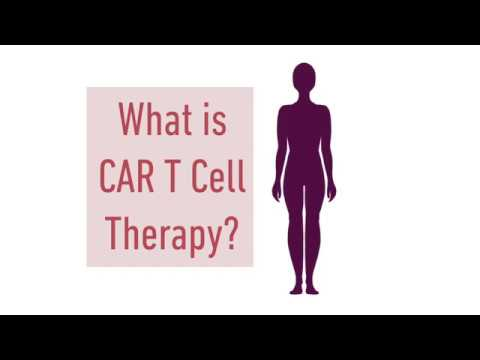 CAR T-CELL THERAPY | Peter MacCallum Cancer Centre