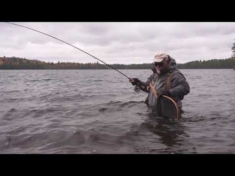 Brook Trout On A Fly - Lac Beauchene Quebec