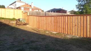 Cedar Fence In Dallas