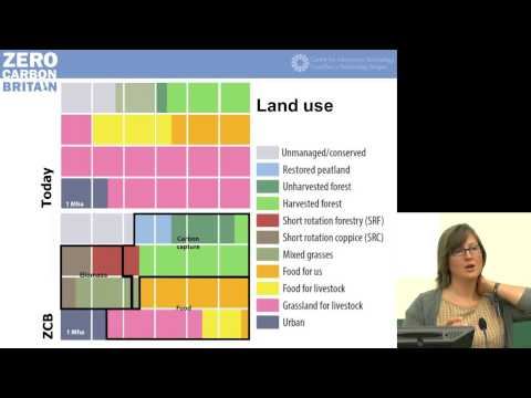 Alice Hooker Strout about Zero Carbon Britain - Degrowth Leipzig 2014