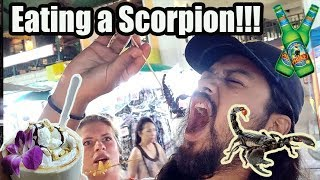| EATING A SCORPION | THAILAND VLOGS 2018 | EPISODE 6