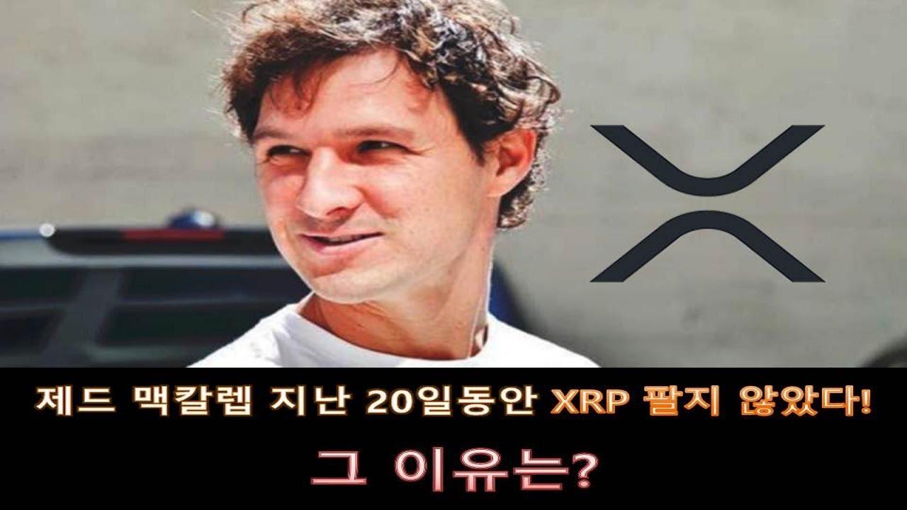 리플, 제드 맥칼렙 지난 20일 동안 XRP 팔지 않았다! 그 이유는?