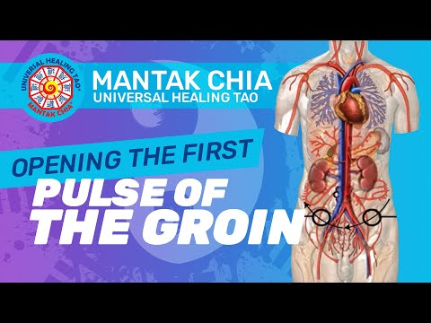 Mantak Chia in Ljubljana, Slovenia 2015 (CNT I)_4) Opening the first pulse