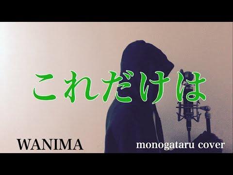 【フル歌詞付き】 これだけは - WANIMA (monogataru cover)