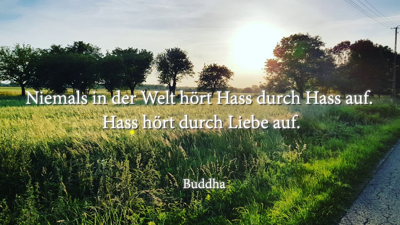 Buddha Zitate Sammlung Youtube