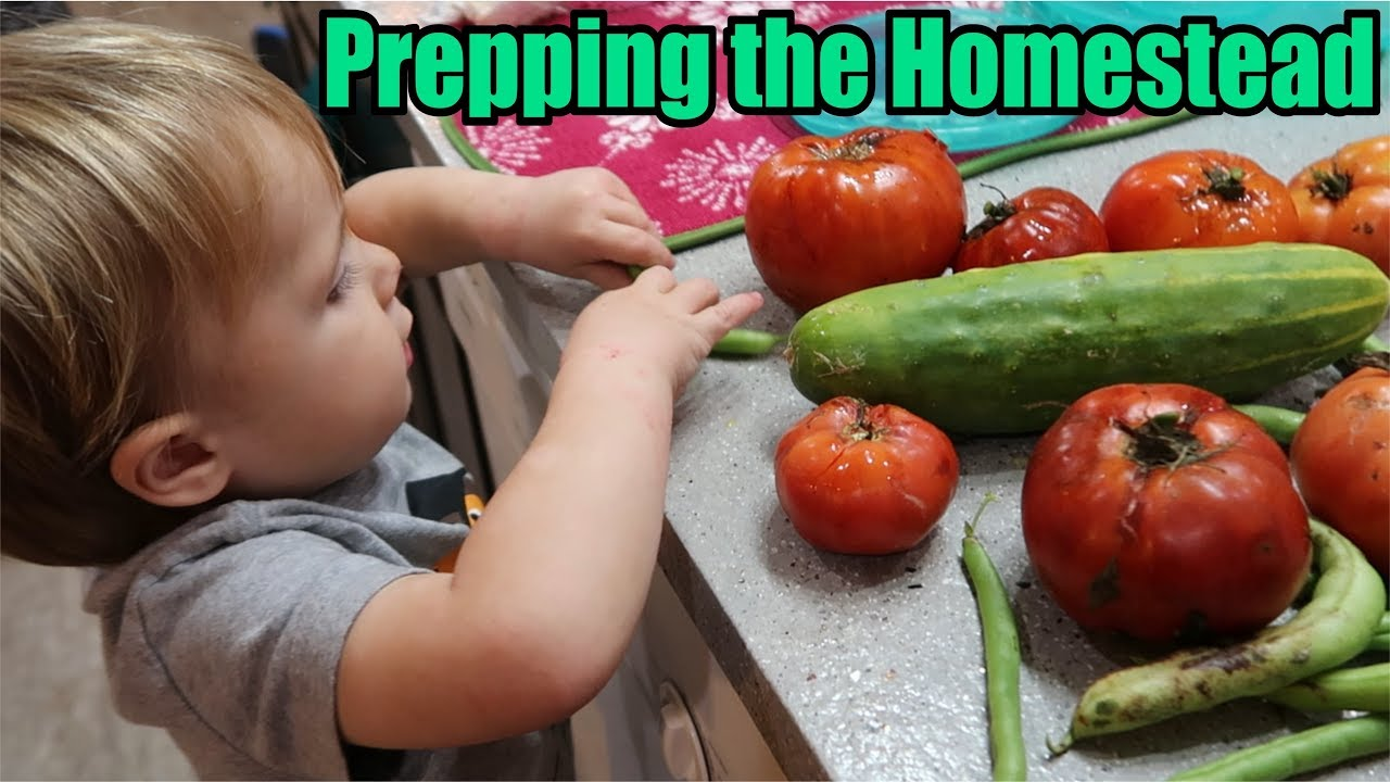 prepping-the-homestead