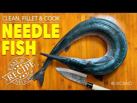Clean, Fillet, & Cook | NEEDLE FISH (LONG TOMS)|