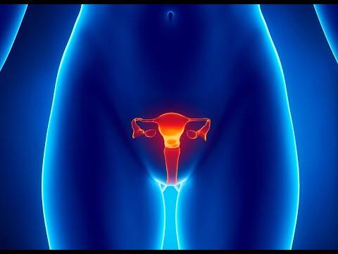 Занятие по теме патология половых органов и беременности - ассистента Наволокина Н.А. СГМУ.