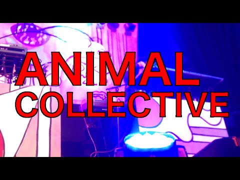 Animal Collective @ The Depot - 03/02/16