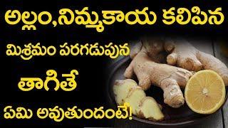 అల్లం నిమ్మకాయ మిశ్రమం మిమ్మల్ని మీరే గుర్తు పట్టలెనంత అద్బుతమైన పలితాలు   #Telugu Health Facts